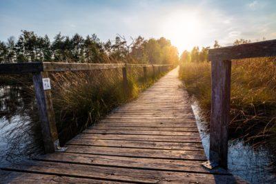 Landschaftsfotografie Lüneburger Heide